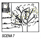 scana-7